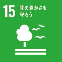 SDGs宣言 15